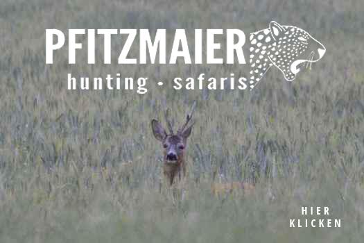 Pfitzmaier Jagdreisen