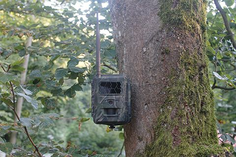 SEISSIGER Funkwildkamera Special Cam LTE 12MP simlock-frei