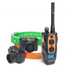 DOGTRA Beeper&Trainer 2602 - 2 Hunde