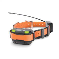 DOGTRA Extra Halsband Pathfinder MINI oranges Halsband