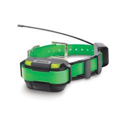 DOGTRA Extra Halsband Pathfinder MINI grünes Halsband